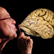 Ron Bonstetter - TTI Success Insights- Brain Power